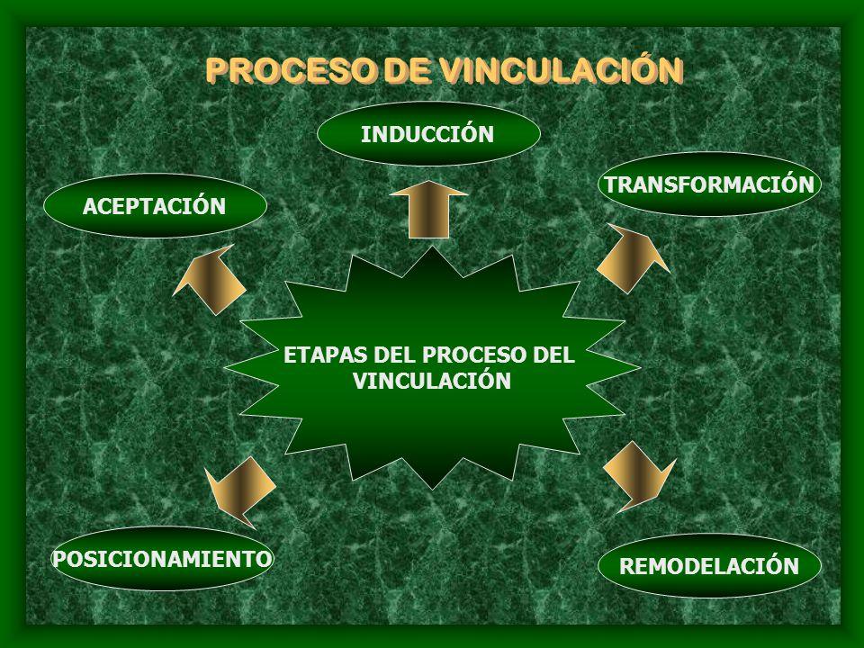 PROCESO DE VINCULACIÓN ETAPAS DEL PROCESO DEL VINCULACIÓN ACEPTACIÓN INDUCCIÓN TRANSFORMACIÓN REMODELACIÓN POSICIONAMIENTO