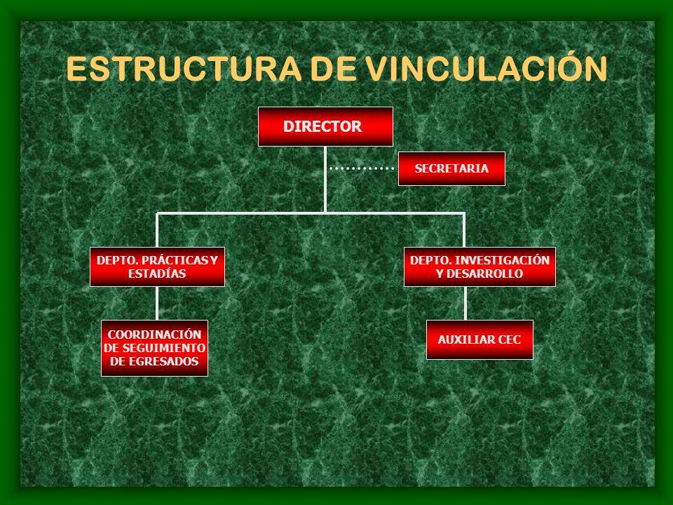 ESTRUCTURA DE VINCULACIÓN DIRECTOR SECRETARIA DEPTO.