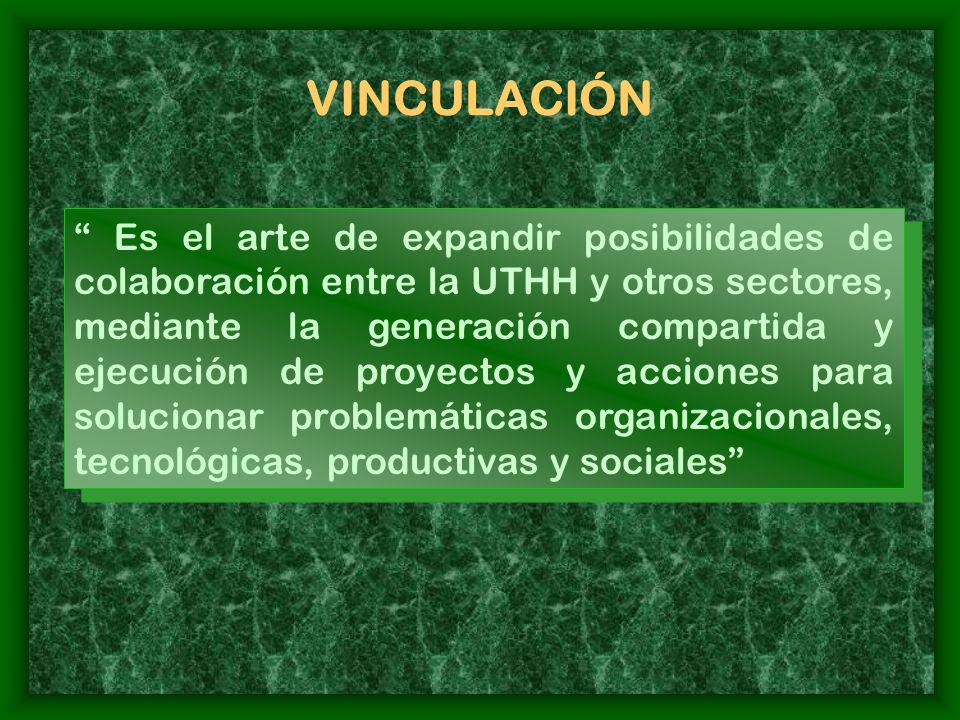 LOS DOS ASPECTOS DE LA VINCULACIÓN ASPECTO CURRICULAR DE LA VINCULACIÓN ASPECTOS CLAVE NO CURRICULARES DE LA VINCULACIÓN Formación del recurso humano académico y estudiantil Resultados de aprendizaje y experiencias prácticas a lograr mediante proyectos Resultados a lograr mediante la vinculación Actualización del curriculum, con base en los conocimientos y experiencias adquiridas mediante proyectos Fortalecimiento de la investigación y la interdisciplinariedad Desarrollo social, económico y tecnológico.
