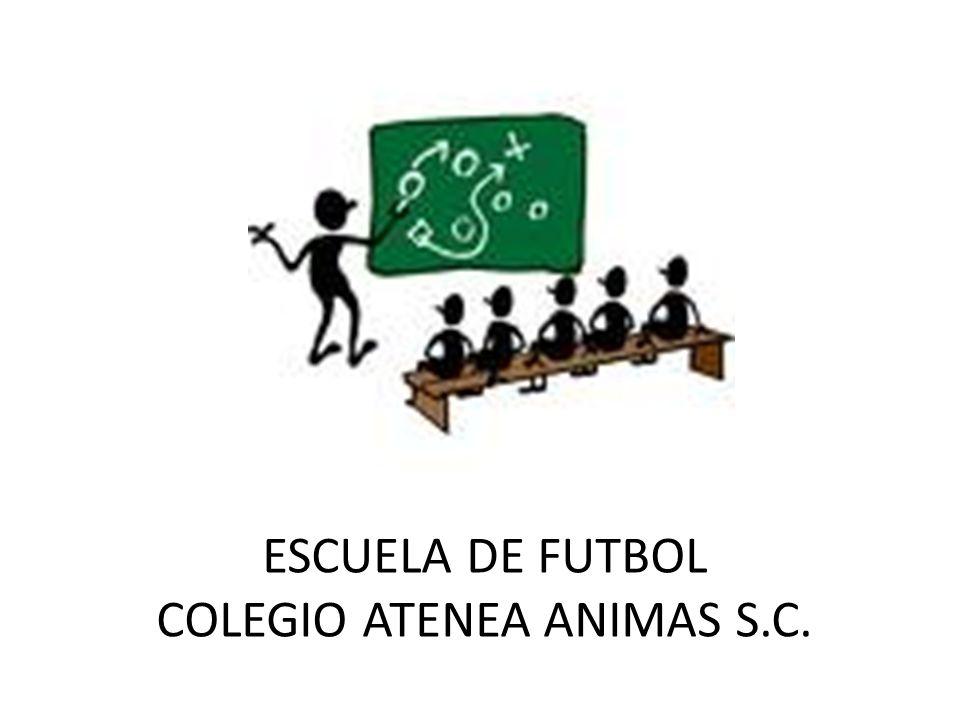 ANTES DE EMPEZAR Hector Luis E.