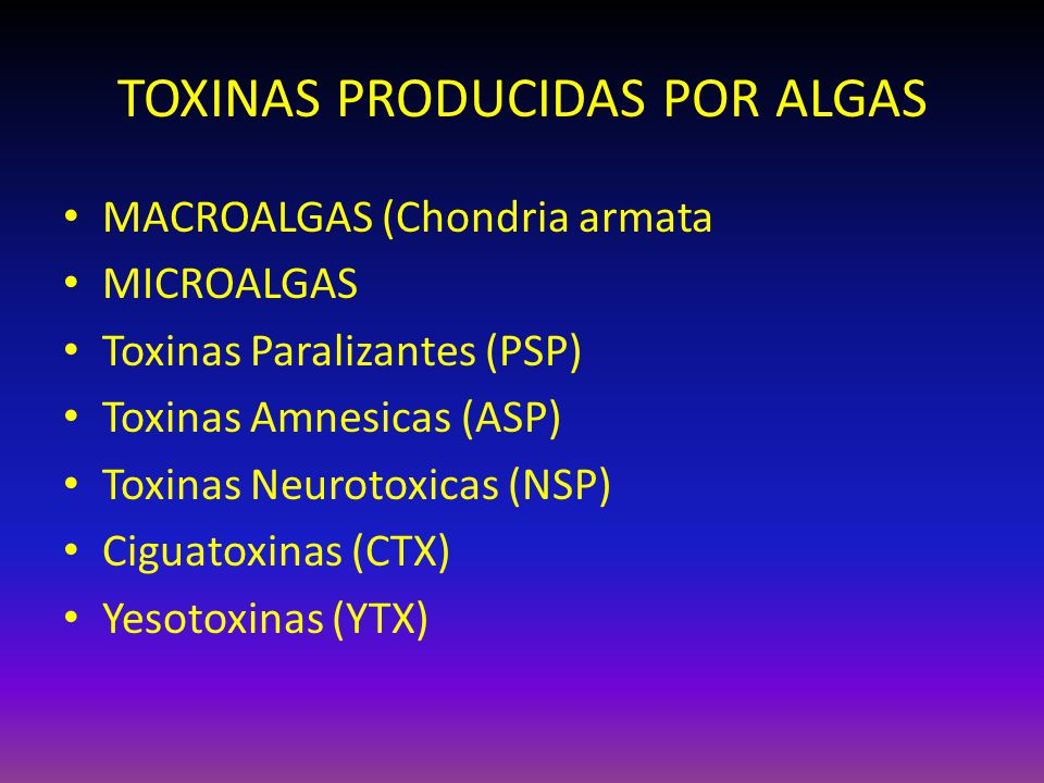 TOXINAS PRODUCIDAS POR ALGAS MACROALGAS (Chondria armata MICROALGAS Toxinas Paralizantes (PSP) Toxinas Amnesicas (ASP) Toxinas Neurotoxicas (NSP) Cigu
