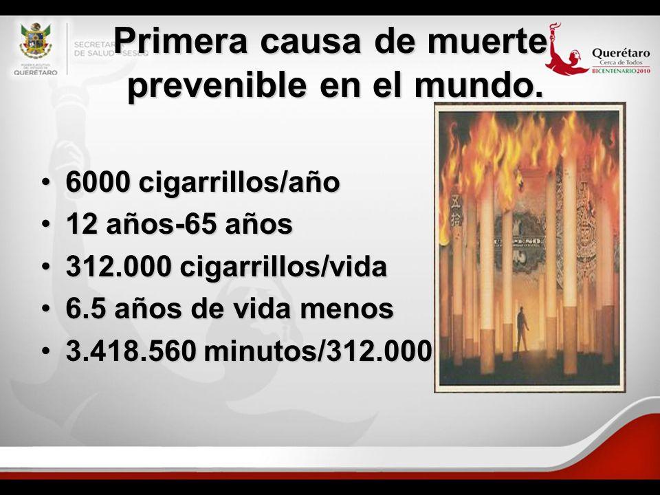 Primera causa de muerte prevenible en el mundo. 6000 cigarrillos/año6000 cigarrillos/año 12 años-65 años12 años-65 años 312.000 cigarrillos/vida312.00
