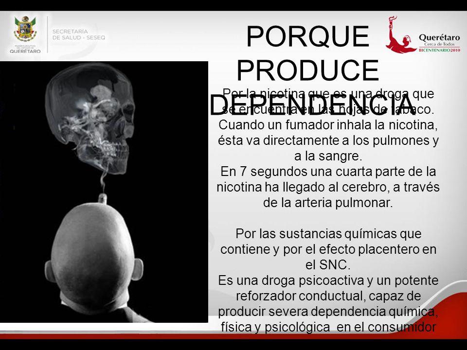 PORQUE PRODUCE DEPENDENCIA Por la nicotina que es una droga que se encuentra en las hojas de tabaco. Cuando un fumador inhala la nicotina, ésta va dir
