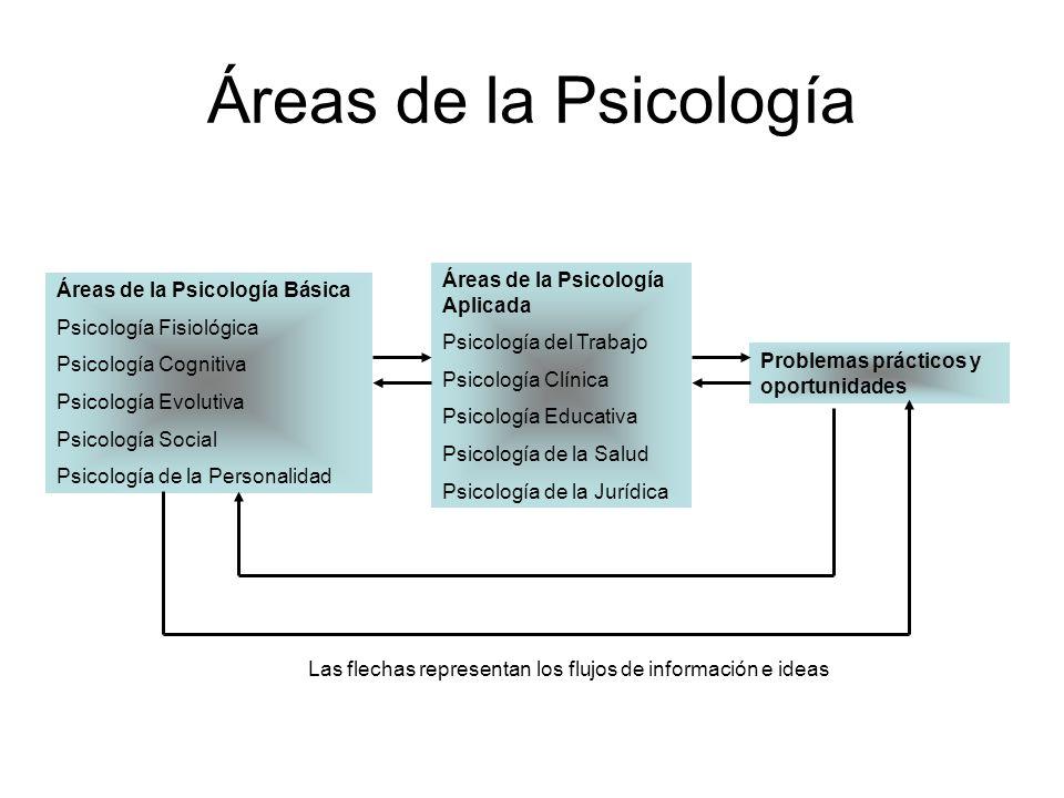 Áreas de la Psicología Básica Psicología Fisiológica Psicología Cognitiva Psicología Evolutiva Psicología Social Psicología de la Personalidad Áreas d