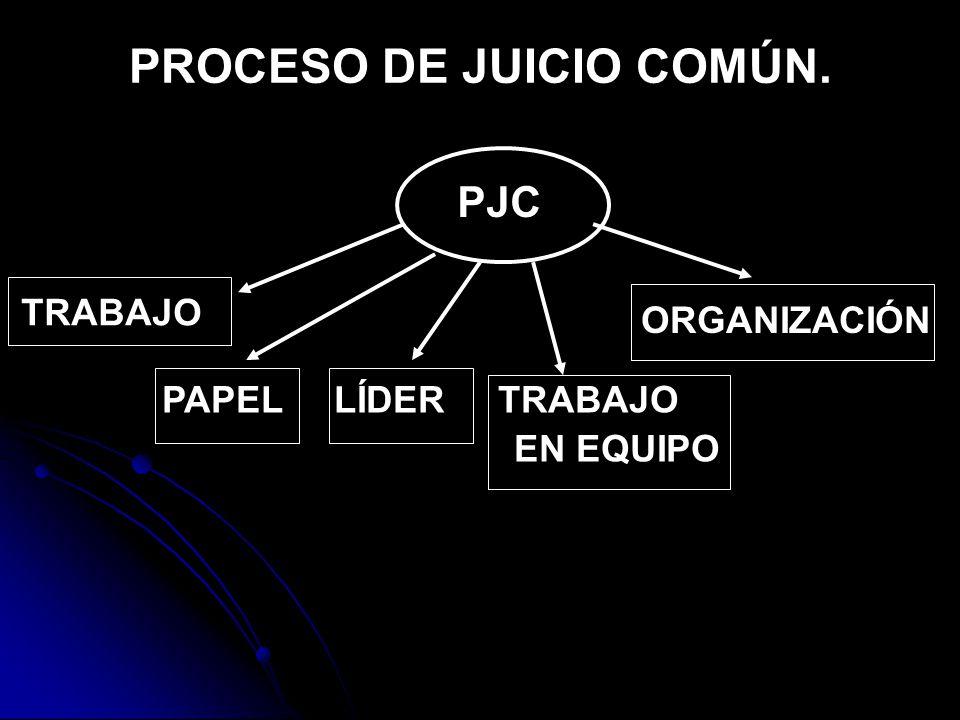 PROCESO DE JUICIO COMÚN. PJC PAPEL LÍDER TRABAJO EN EQUIPO TRABAJO ORGANIZACIÓN