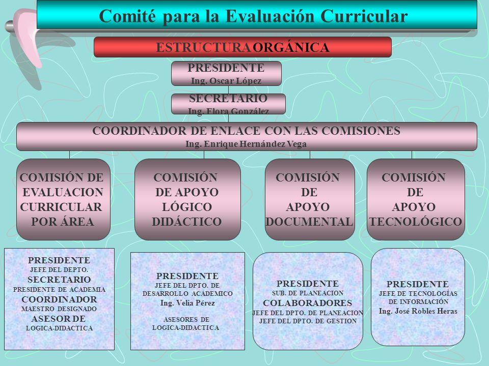 Comité para la Evaluación Curricular ESTRUCTURA ORGÁNICA PRESIDENTE Ing. Oscar López SECRETARIO Ing. Flora González COORDINADOR DE ENLACE CON LAS COMI