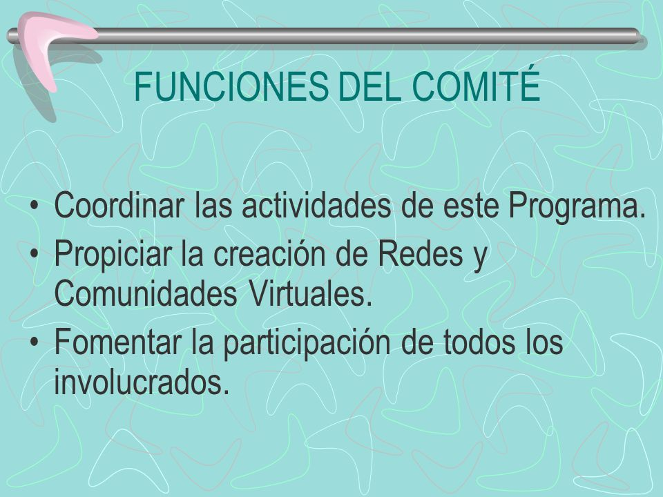 FUNCIONES DEL COMITÉ Coordinar las actividades de este Programa. Propiciar la creación de Redes y Comunidades Virtuales. Fomentar la participación de