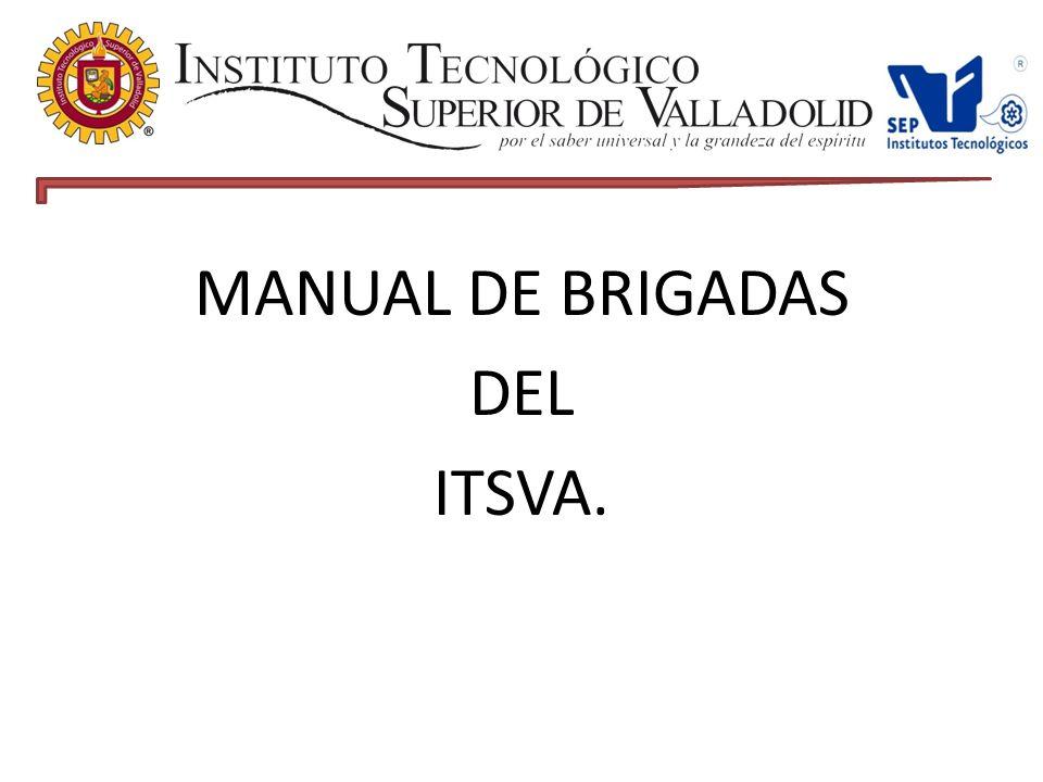 MANUAL DE BRIGADAS DEL ITSVA.