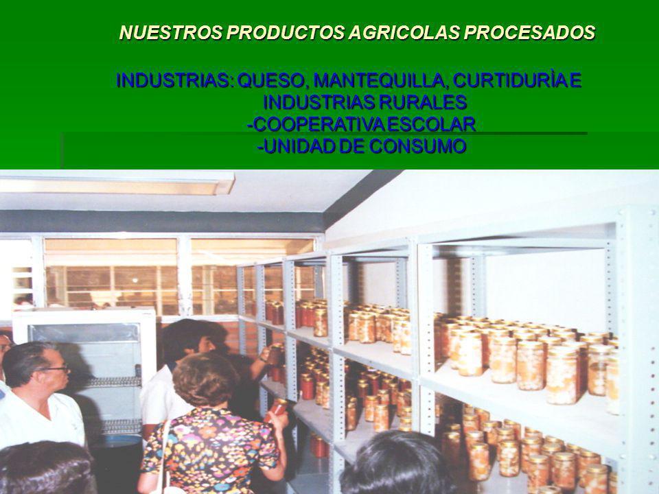NUESTROS PRODUCTOS AGRICOLAS PROCESADOS NUESTROS PRODUCTOS AGRICOLAS PROCESADOS INDUSTRIAS: QUESO, MANTEQUILLA, CURTIDURÌA E INDUSTRIAS RURALES INDUST