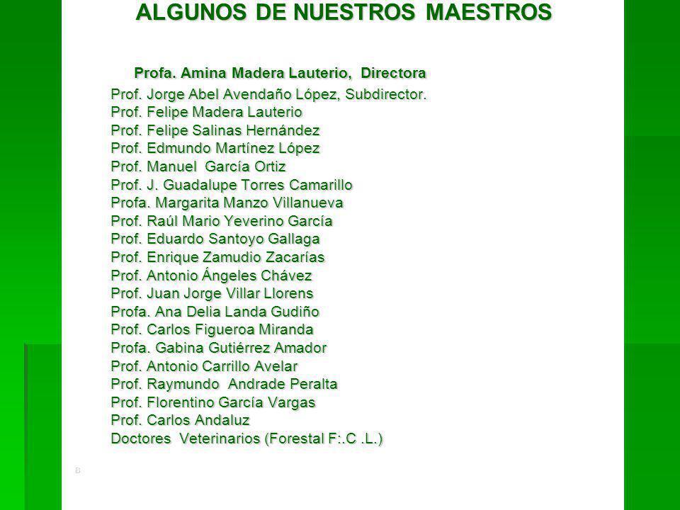 ALGUNOS DE NUESTROS MAESTROS ALGUNOS DE NUESTROS MAESTROS Profa. Amina Madera Lauterio, Directora Profa. Amina Madera Lauterio, Directora Prof. Jorge