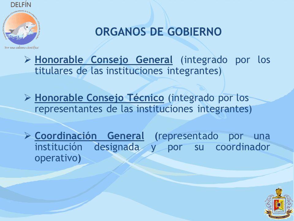 ORGANOS DE GOBIERNO Honorable Consejo General (integrado por los titulares de las instituciones integrantes) Honorable Consejo Técnico (integrado por