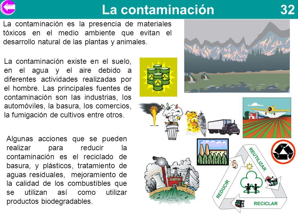 La contaminación 32 La contaminación es la presencia de materiales tóxicos en el medio ambiente que evitan el desarrollo natural de las plantas y anim