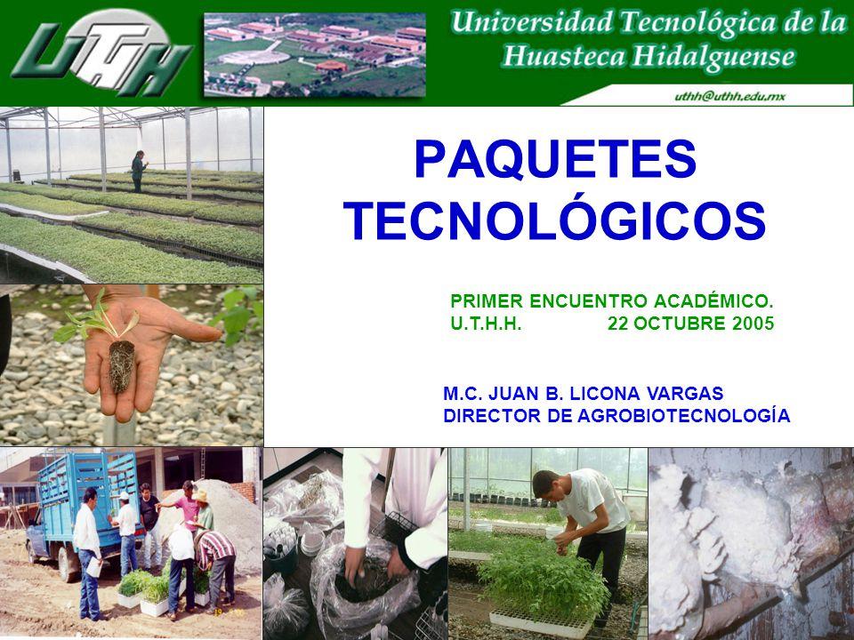 PAQUETES TECNOLÓGICOS M.C. JUAN B. LICONA VARGAS DIRECTOR DE AGROBIOTECNOLOGÍA PRIMER ENCUENTRO ACADÉMICO. U.T.H.H. 22 OCTUBRE 2005