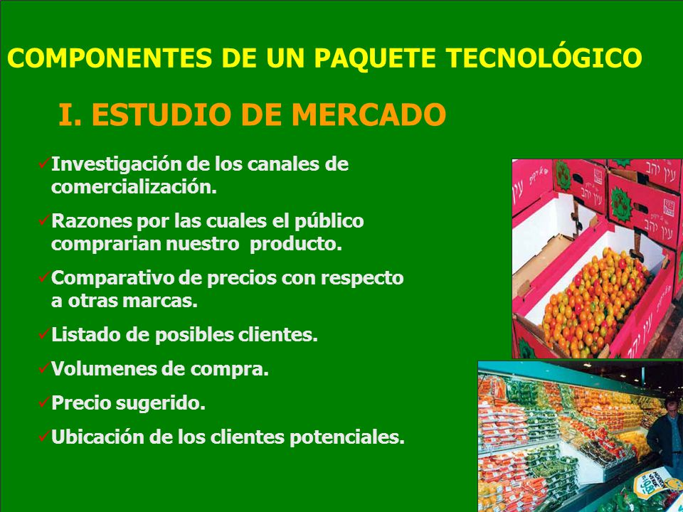 I.ESTUDIO DE MERCADO Investigación de los canales de comercialización.