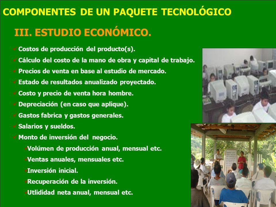 III. ESTUDIO ECONÓMICO. Costos de producción del producto(s). Cálculo del costo de la mano de obra y capital de trabajo. Precios de venta en base al e