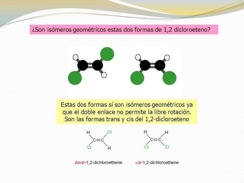 Estas dos formas sí son isómeros geométricos ya que el doble enlace no permite la libre rotación.
