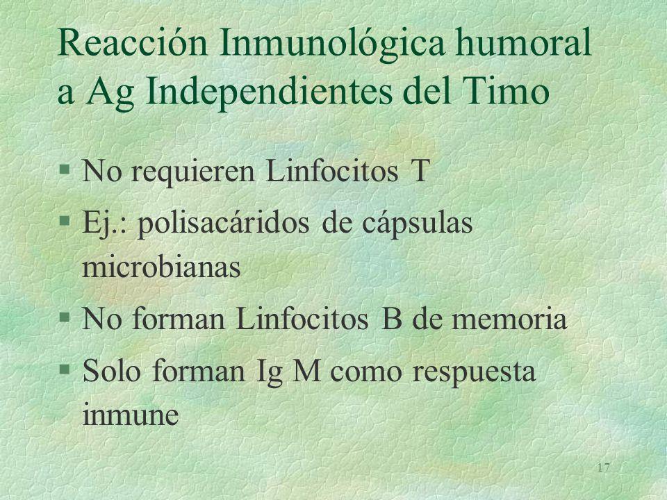 16 Inmuno competencia mieloide de linfocitos B. (t)t §Producción de 50 K a 100 K de Ig M y D §Fijación de Igs al plasmalema (IgS) §Reacción con el Epí
