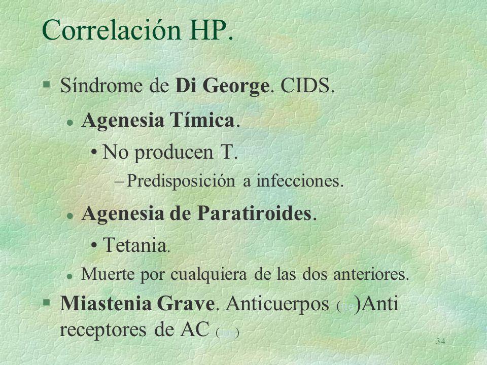 33 Timo.Hormonas relacionadas. §Somatotropina. l Estimula desarrollo T en corteza §Tiroxina.