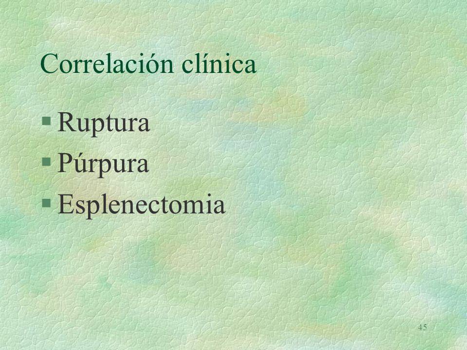 44 Eritrofagocitosis.