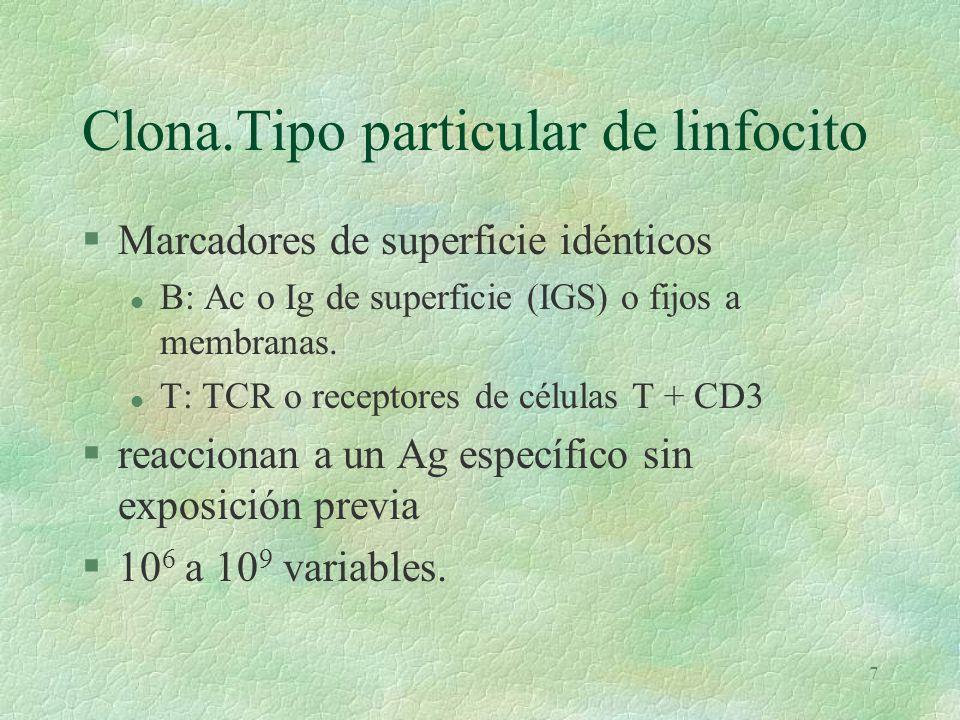 7 Clona.Tipo particular de linfocito §Marcadores de superficie idénticos l B: Ac o Ig de superficie (IGS) o fijos a membranas.