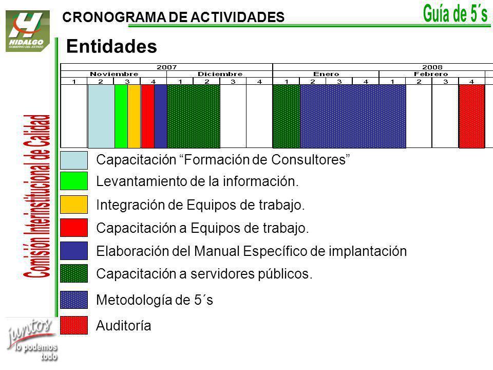 CRONOGRAMA DE ACTIVIDADES Capacitación Formación de Consultores Levantamiento de la información.