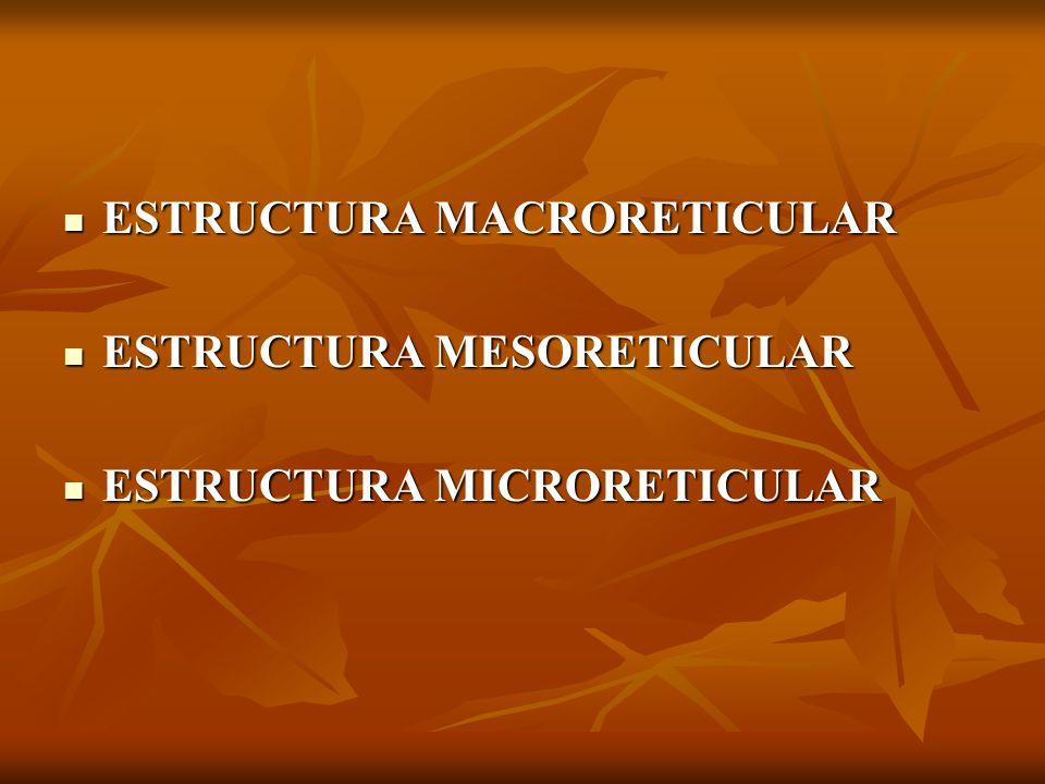 ESTRUCTURA MACRORETICULAR ESTRUCTURA MACRORETICULAR ESTRUCTURA MESORETICULAR ESTRUCTURA MESORETICULAR ESTRUCTURA MICRORETICULAR ESTRUCTURA MICRORETICULAR