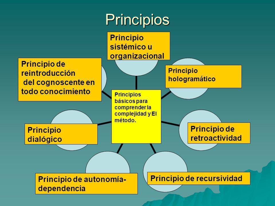 Principios Principios básicos para comprender la complejidad y El método. Principio hologramático Principio de retroactividad Principio de recursivida
