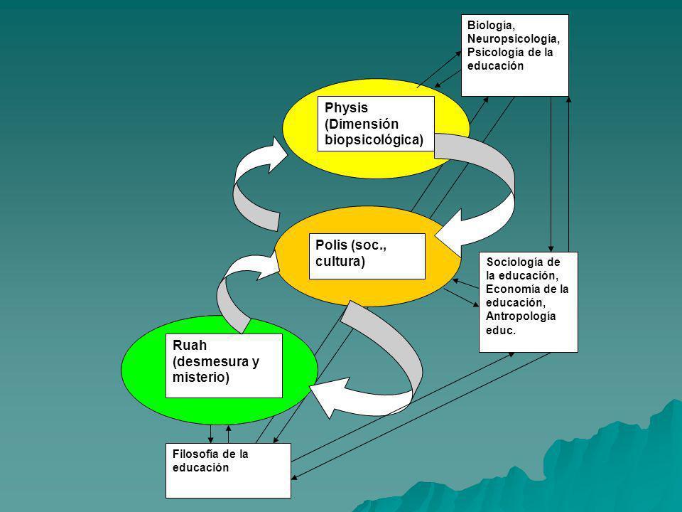 Physis (Dimensión biopsicológica) Polis (soc., cultura) Ruah (desmesura y misterio) Biología, Neuropsicología, Psicología de la educación Sociología d