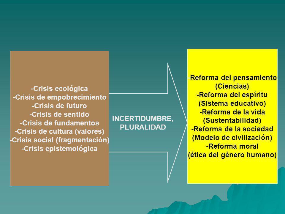 -Crisis ecológica -Crisis de empobrecimiento -Crisis de futuro -Crisis de sentido -Crisis de fundamentos -Crisis de cultura (valores) -Crisis social (