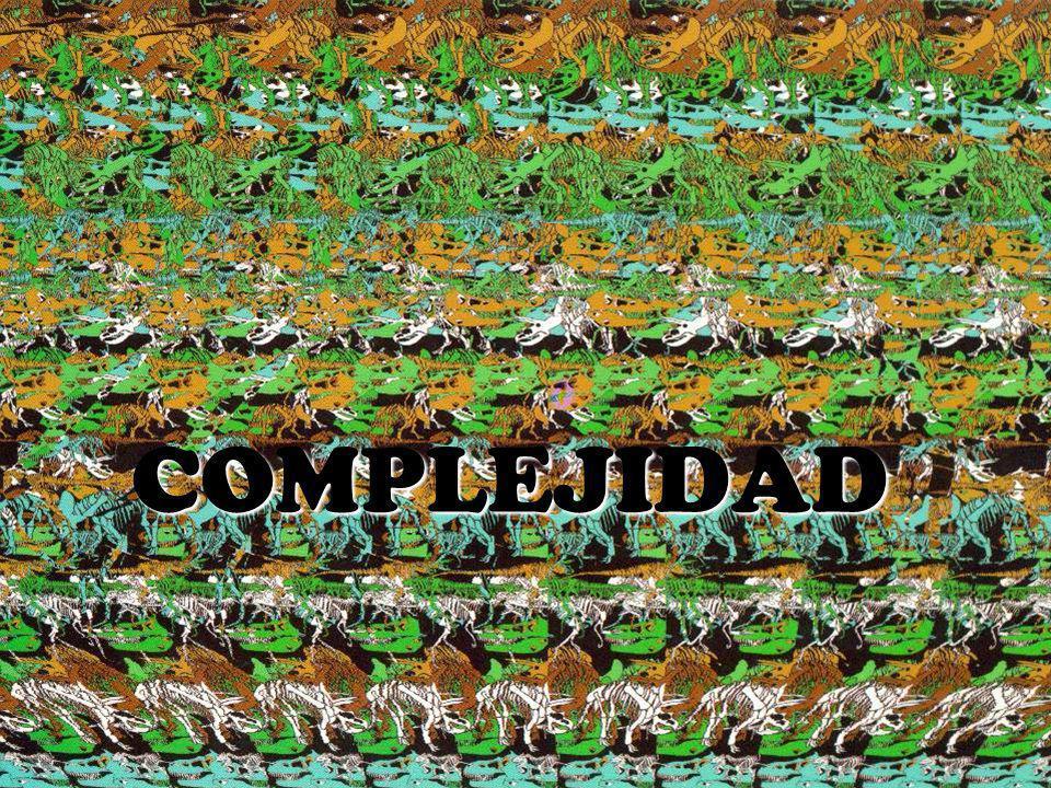 DEFINICIÓN Desde un punto de vista etimológico, Desde un punto de vista etimológico, la palabra complejidad es de origen latino, proviene de complectere, cuya raíz plectere significa trenzar, enlazar -(Morin, 2006; p.