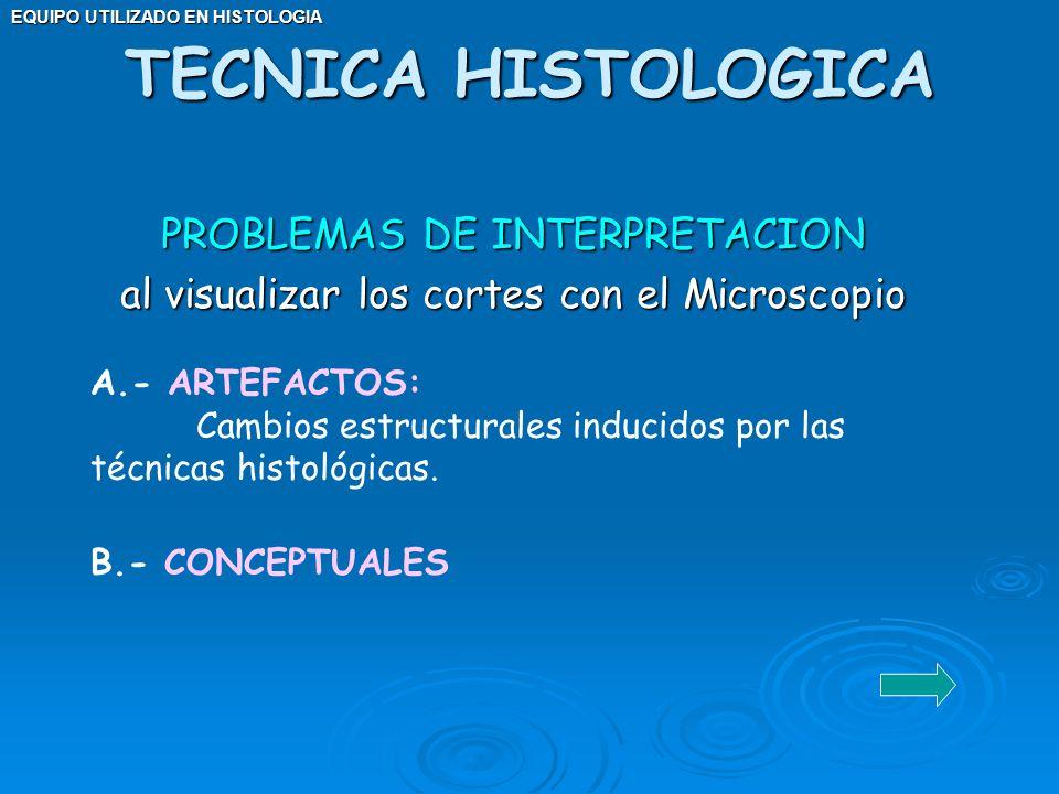 EQUIPO UTILIZADO EN HISTOLOGIA PROBLEMAS DE INTERPRETACION al visualizar los cortes con el Microscopio TECNICA HISTOLOGICA A.- ARTEFACTOS: Cambios est