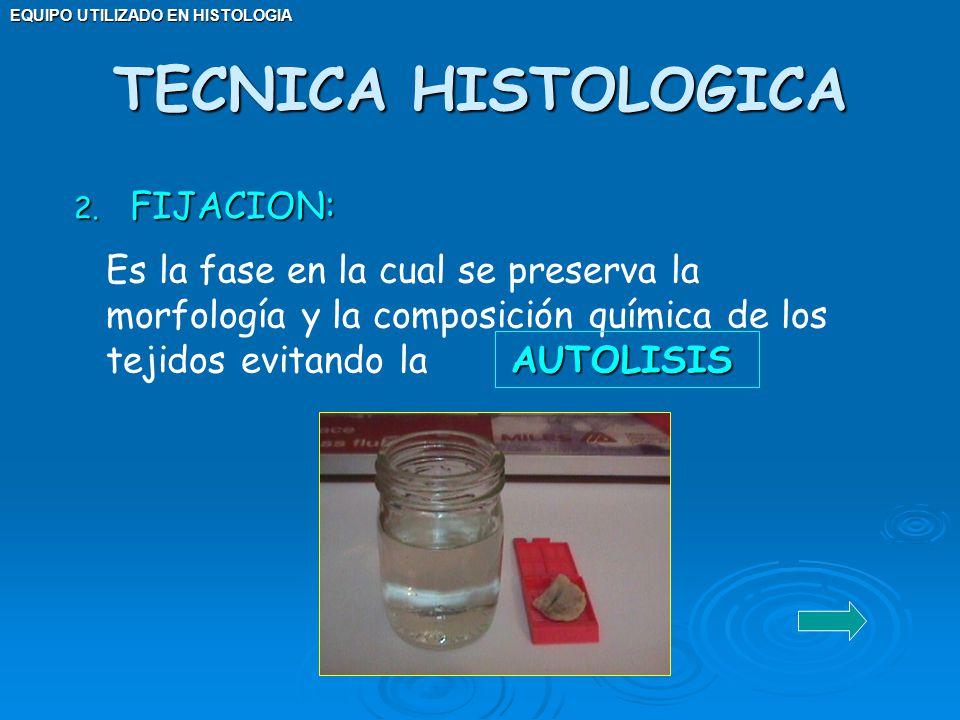 EQUIPO UTILIZADO EN HISTOLOGIA 2. FIJACION: AUTOLISIS Es la fase en la cual se preserva la morfología y la composición química de los tejidos evitando