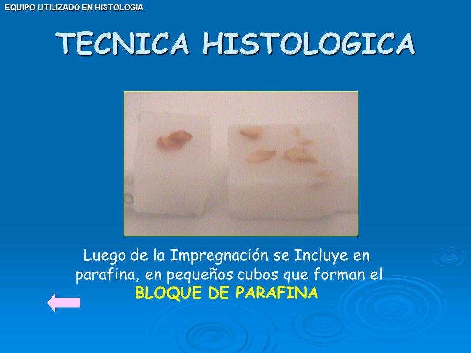 EQUIPO UTILIZADO EN HISTOLOGIA Luego de la Impregnación se Incluye en parafina, en pequeños cubos que forman el BLOQUE DE PARAFINA TECNICA HISTOLOGICA