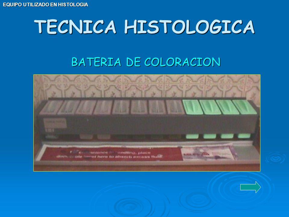 EQUIPO UTILIZADO EN HISTOLOGIA BATERIA DE COLORACION TECNICA HISTOLOGICA