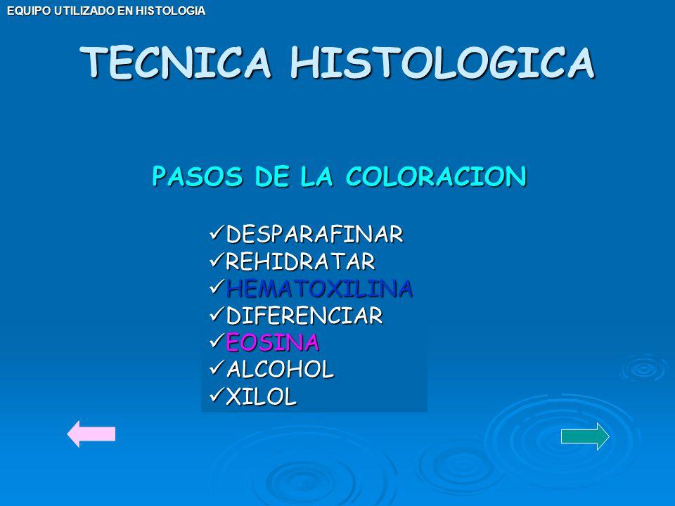 EQUIPO UTILIZADO EN HISTOLOGIA PASOS DE LA COLORACION DESPARAFINAR DESPARAFINAR REHIDRATAR REHIDRATAR HEMATOXILINA HEMATOXILINA DIFERENCIAR DIFERENCIA