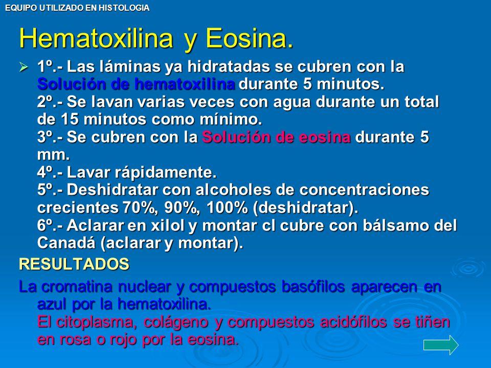EQUIPO UTILIZADO EN HISTOLOGIA Hematoxilina y Eosina. 1º.- Las láminas ya hidratadas se cubren con la Solución de hematoxilina durante 5 minutos. 2º.-