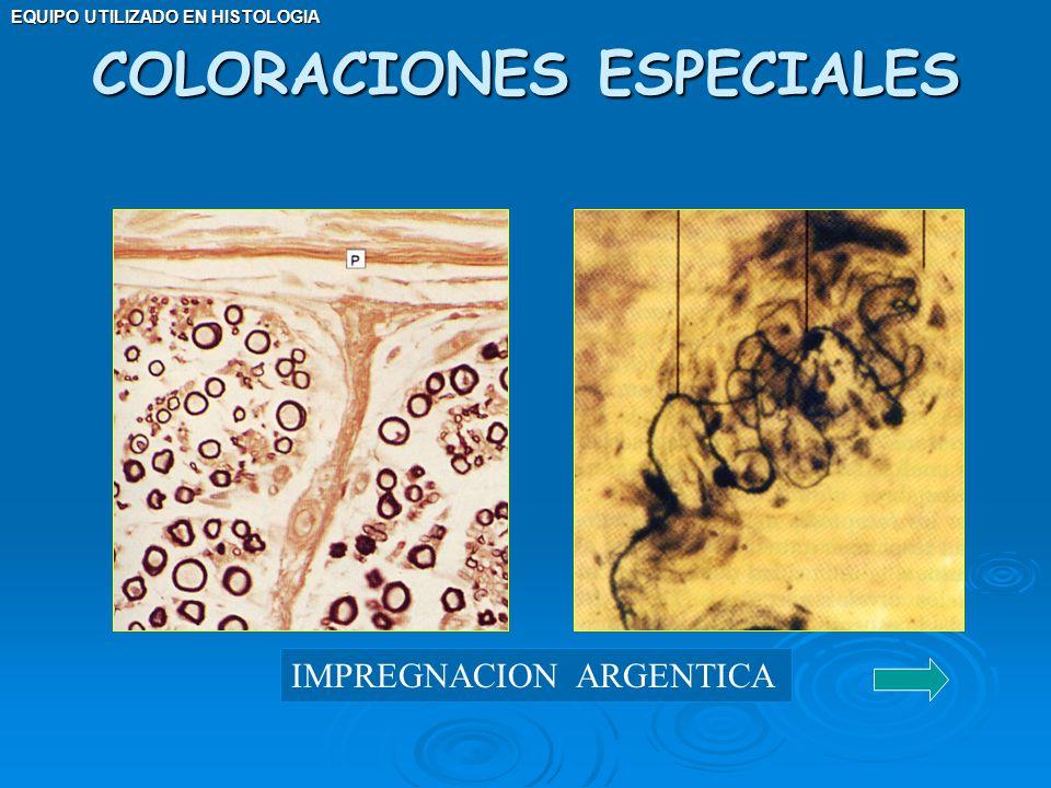 EQUIPO UTILIZADO EN HISTOLOGIA COLORACIONES ESPECIALES IMPREGNACION ARGENTICA