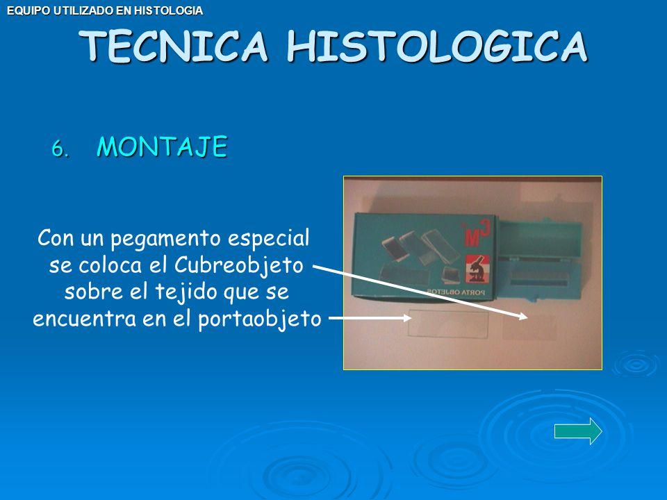 EQUIPO UTILIZADO EN HISTOLOGIA 6. MONTAJE TECNICA HISTOLOGICA Con un pegamento especial se coloca el Cubreobjeto sobre el tejido que se encuentra en e