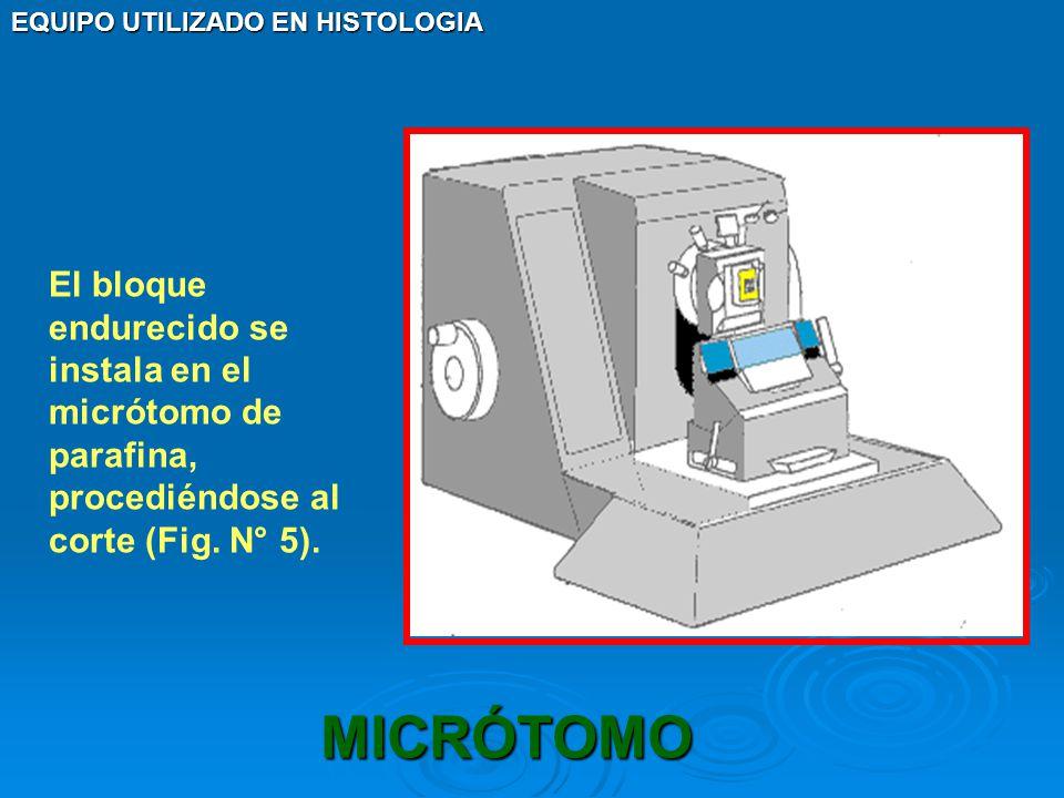 EQUIPO UTILIZADO EN HISTOLOGIA MICRÓTOMO El bloque endurecido se instala en el micrótomo de parafina, procediéndose al corte (Fig. N° 5).