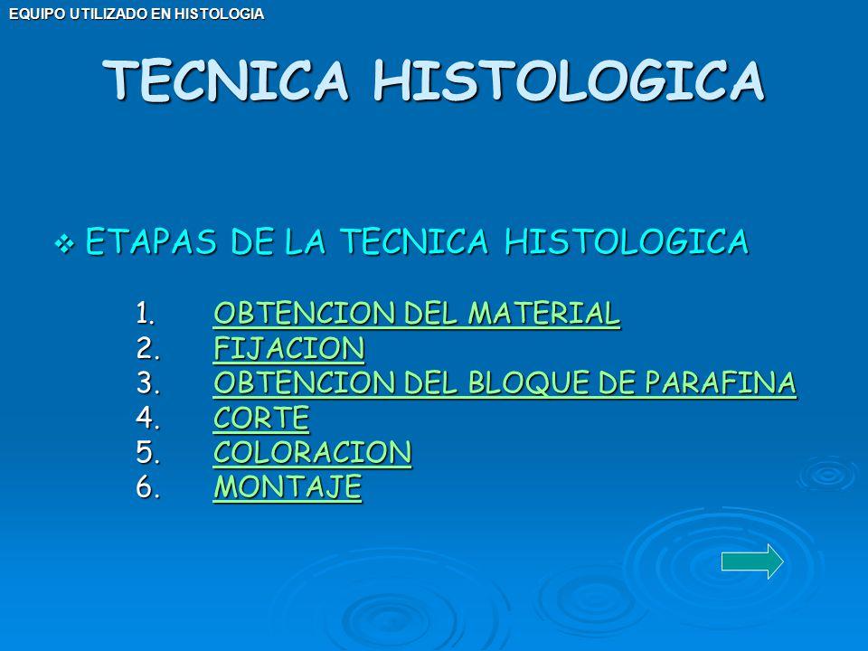 EQUIPO UTILIZADO EN HISTOLOGIA ETAPAS DE LA TECNICA HISTOLOGICA ETAPAS DE LA TECNICA HISTOLOGICA 1. OBTENCION DEL MATERIAL OBTENCION DEL MATERIALOBTEN