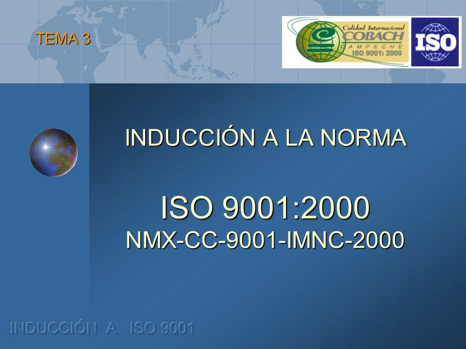 INDUCCIÓN A LA NORMA ISO 9001:2000 NMX-CC-9001-IMNC-2000 TEMA 3
