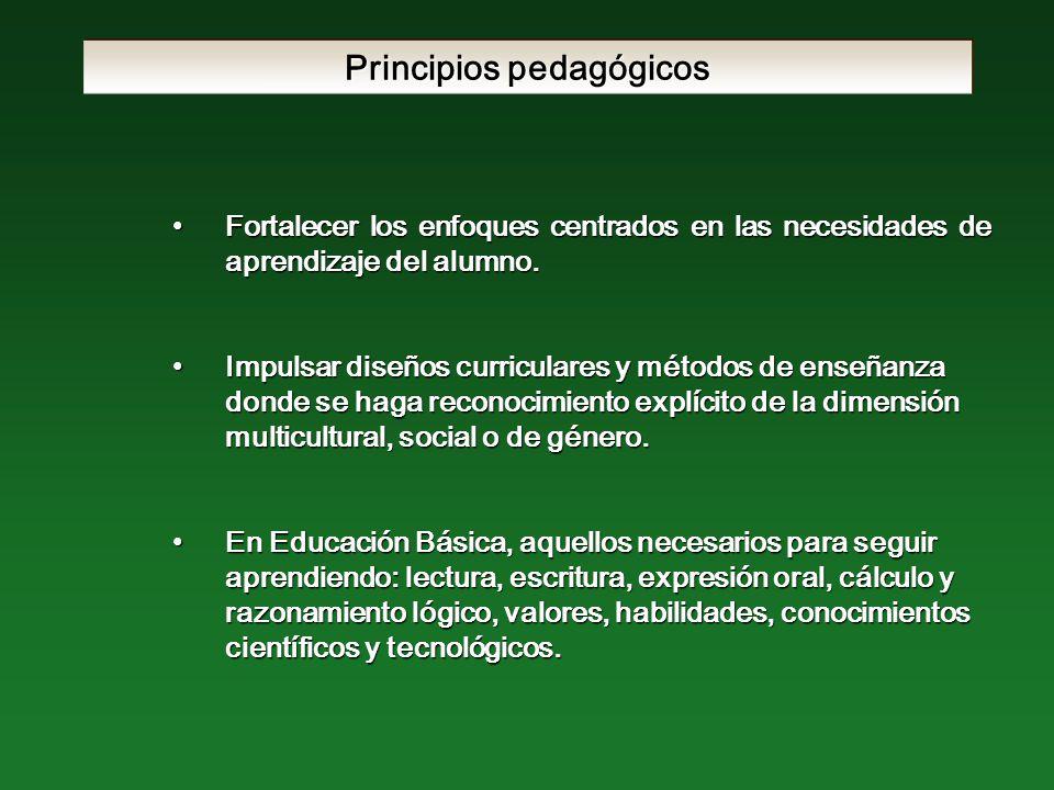 Principios pedagógicos Fortalecer los enfoques centrados en las necesidades de aprendizaje del alumno.Fortalecer los enfoques centrados en las necesidades de aprendizaje del alumno.