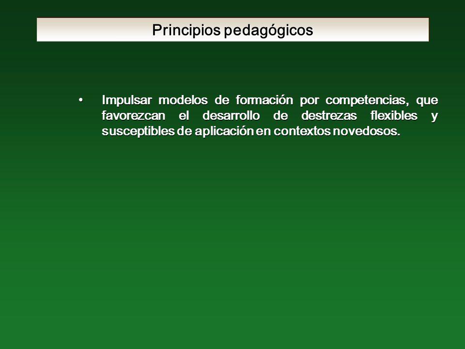 Principios pedagógicos Impulsar modelos de formación por competencias, que favorezcan el desarrollo de destrezas flexibles y susceptibles de aplicación en contextos novedosos.Impulsar modelos de formación por competencias, que favorezcan el desarrollo de destrezas flexibles y susceptibles de aplicación en contextos novedosos.