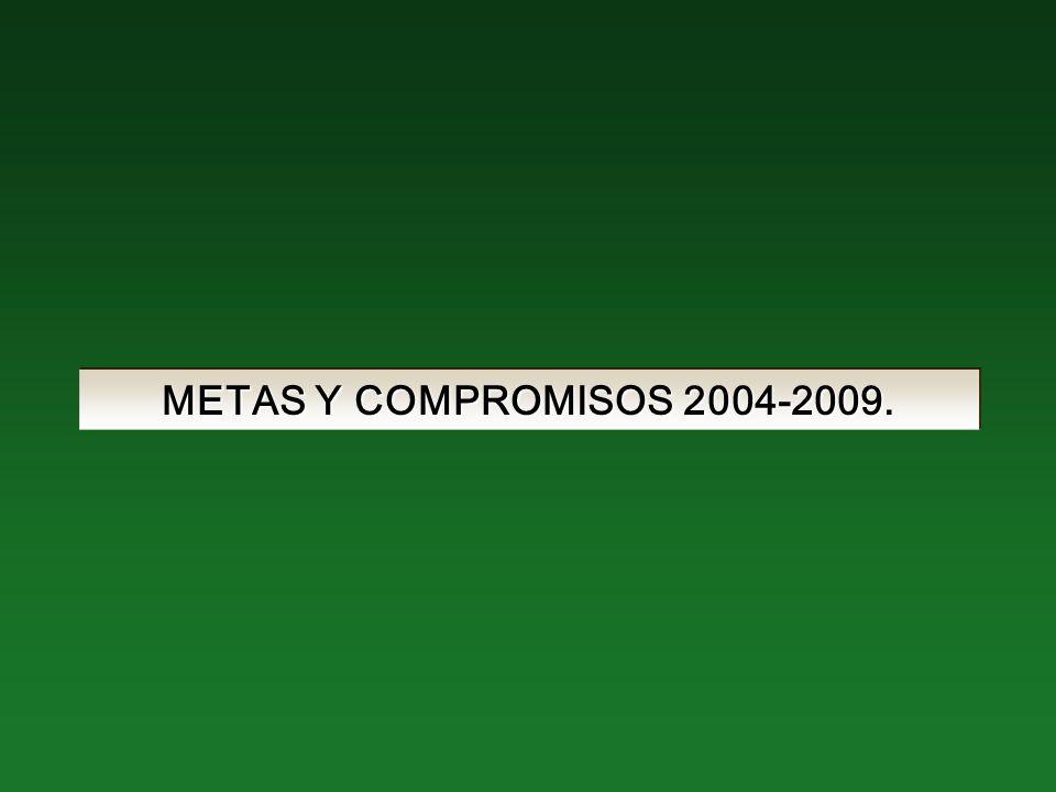 METAS Y COMPROMISOS 2004-2009.