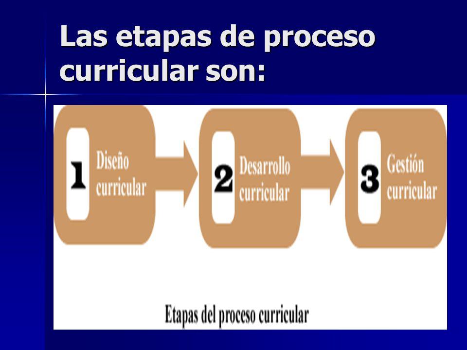 Las etapas de proceso curricular son: