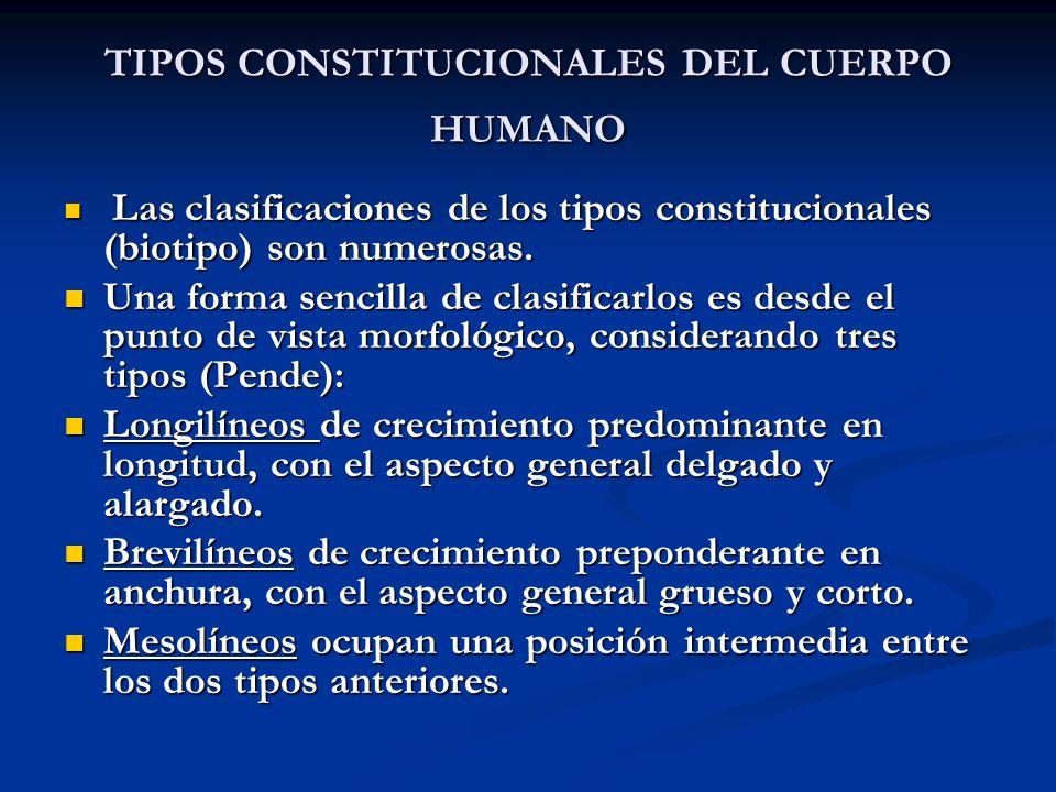 TIPOS CONSTITUCIONALES DEL CUERPO HUMANO Las clasificaciones de los tipos constitucionales (biotipo) son numerosas. Las clasificaciones de los tipos c