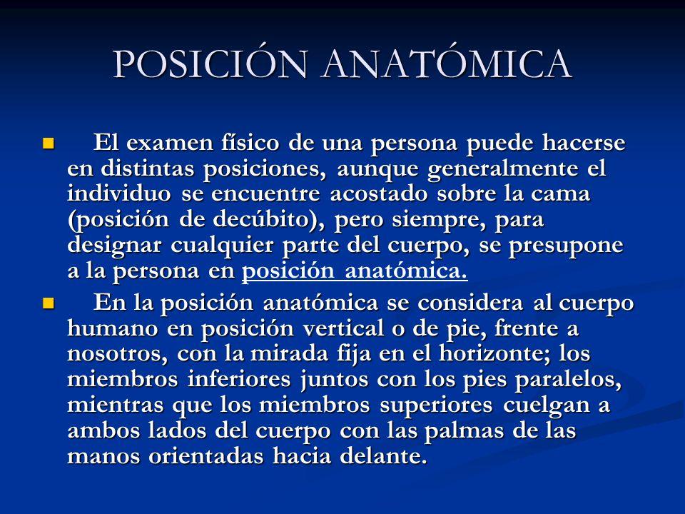POSICIÓN ANATÓMICA El examen físico de una persona puede hacerse en distintas posiciones, aunque generalmente el individuo se encuentre acostado sobre
