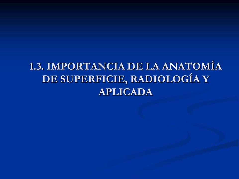 1.3. IMPORTANCIA DE LA ANATOMÍA DE SUPERFICIE, RADIOLOGÍA Y APLICADA
