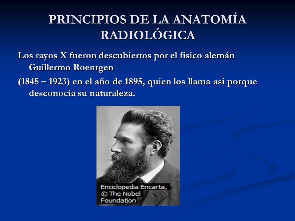 PRINCIPIOS DE LA ANATOMÍA RADIOLÓGICA Los rayos X fueron descubiertos por el físico alemán Guillermo Roentgen (1845 – 1923) en el año de 1895, quien l
