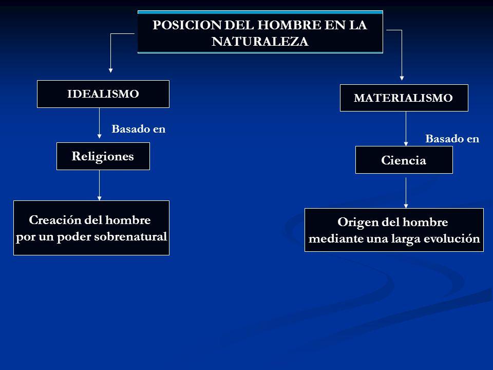 La estructura del cuerpo humano presenta características comunes de todos los vertebrados: La existencia de un esqueleto axial y medio.